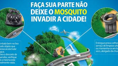 consigaz contra o mosquito da dengue